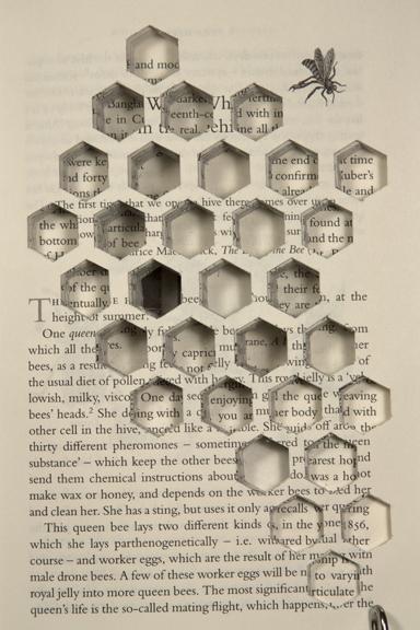 hive-detail