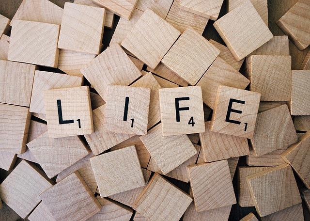 life-1662879_640